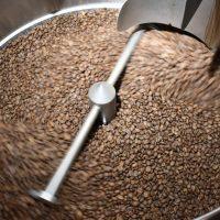 Borealis Coffee Beans.jpg