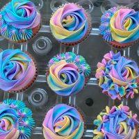 QuinnSea Cupcakes Colorful.jpg