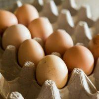 FreshConn Eggs.jpg