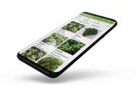 FreshConn App.jpg