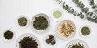 Leafy Green Tea Bowls.jpg