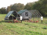 Aquidneck Farms Chicken Coop.jpg