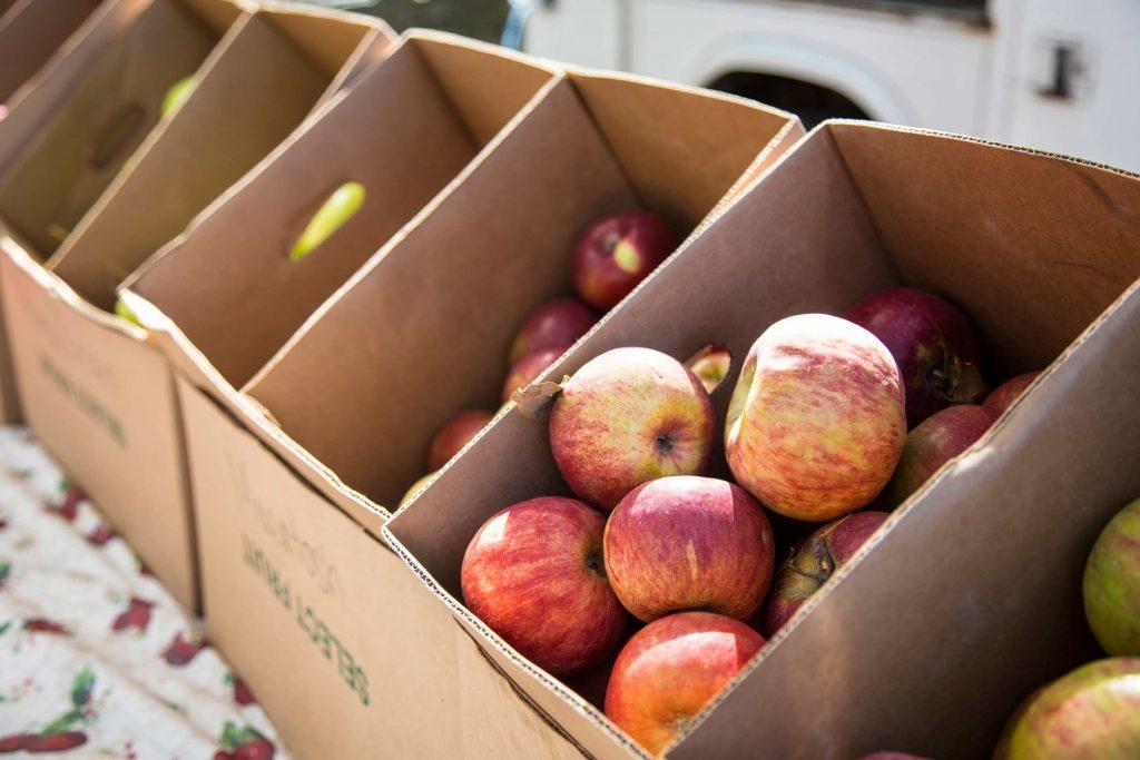 Fresh apples at Schoolyard Market